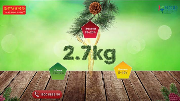 Giới thiệu tinh dầu thông đỏ Royal Korean Red Pine