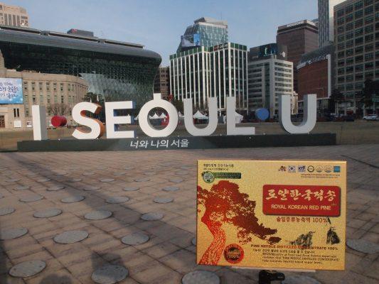 Công dụng của thông đỏ Hàn Quốc và Việt Nam có gì khác biệt
