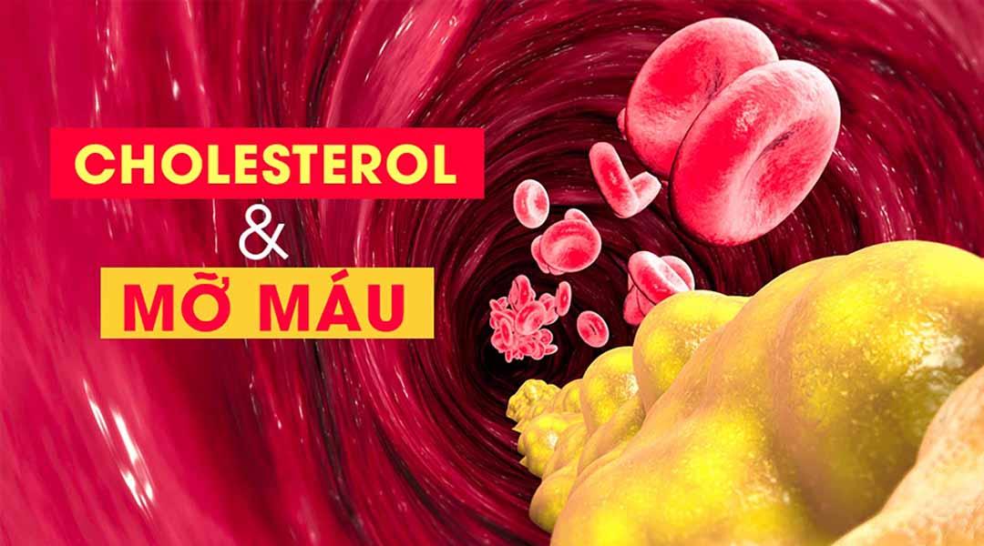 Máu nhiễm mỡ - Nguyên nhân và cách phòng ngừa